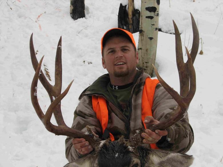 Colorado-Mule-Deer